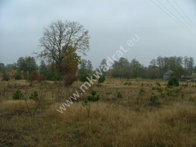 Działka budowlana na sprzedaż Nowe Polesie  10000m2 Foto 3