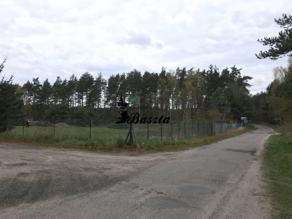 Działka budowlana na sprzedaż Wirów  5400m2 Foto 4