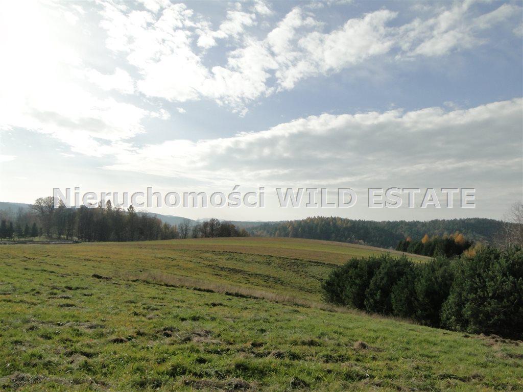 Działka rolna na sprzedaż Solina, Berezka  10398m2 Foto 4