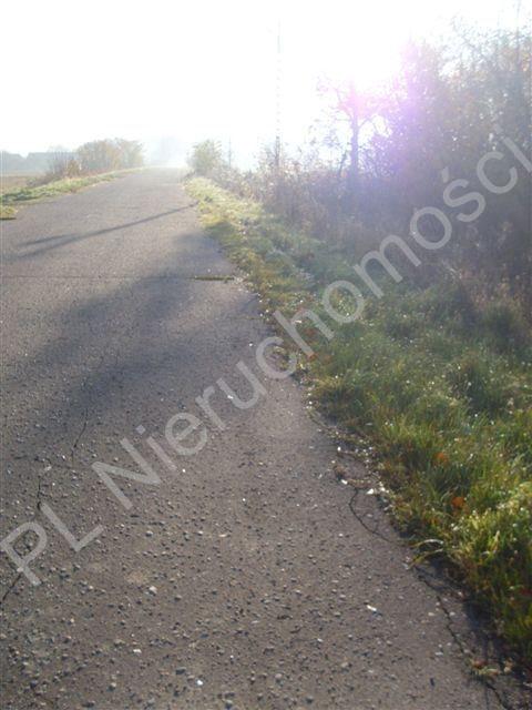 Działka rolna na sprzedaż Gurba  11800m2 Foto 4