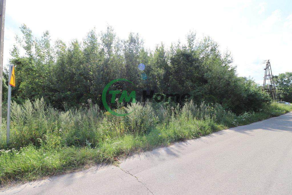 Działka siedliskowa na sprzedaż Piskornia  33721m2 Foto 4