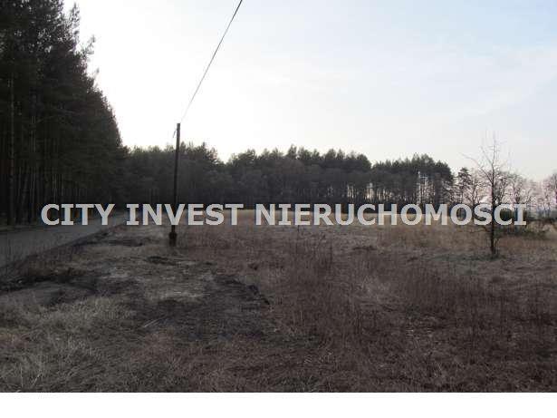 Działka siedliskowa na sprzedaż Zielona Góra, Kiełpin  16700m2 Foto 7