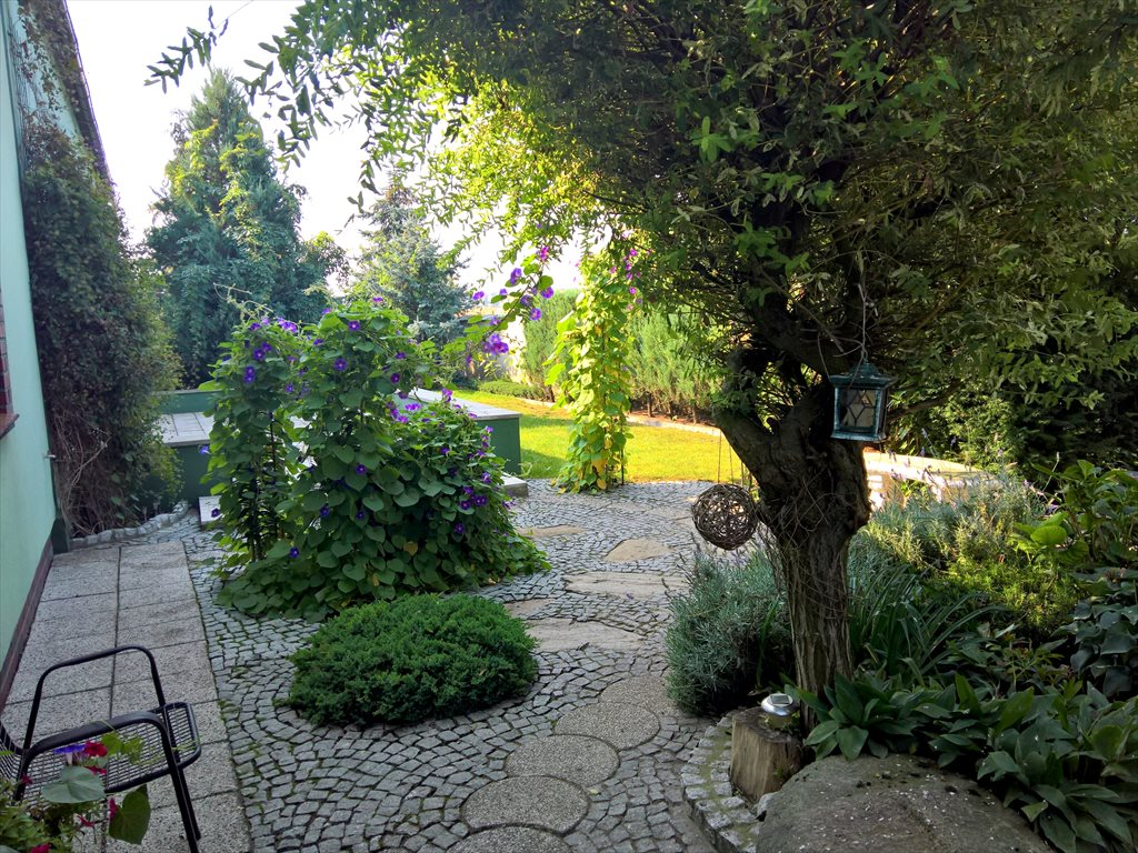 Dom na sprzedaż Lipno, Żakowo  250m2 Foto 11