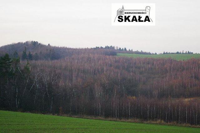 Działka rekreacyjna na sprzedaż Smardzowice, Ojców  1500m2 Foto 1