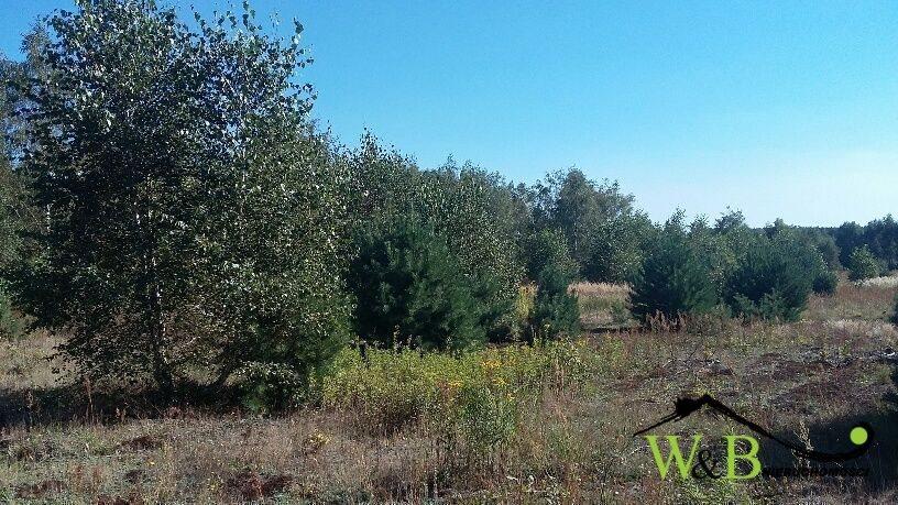Działka rolna na sprzedaż Ożarowice, Kościuszki  8839m2 Foto 1