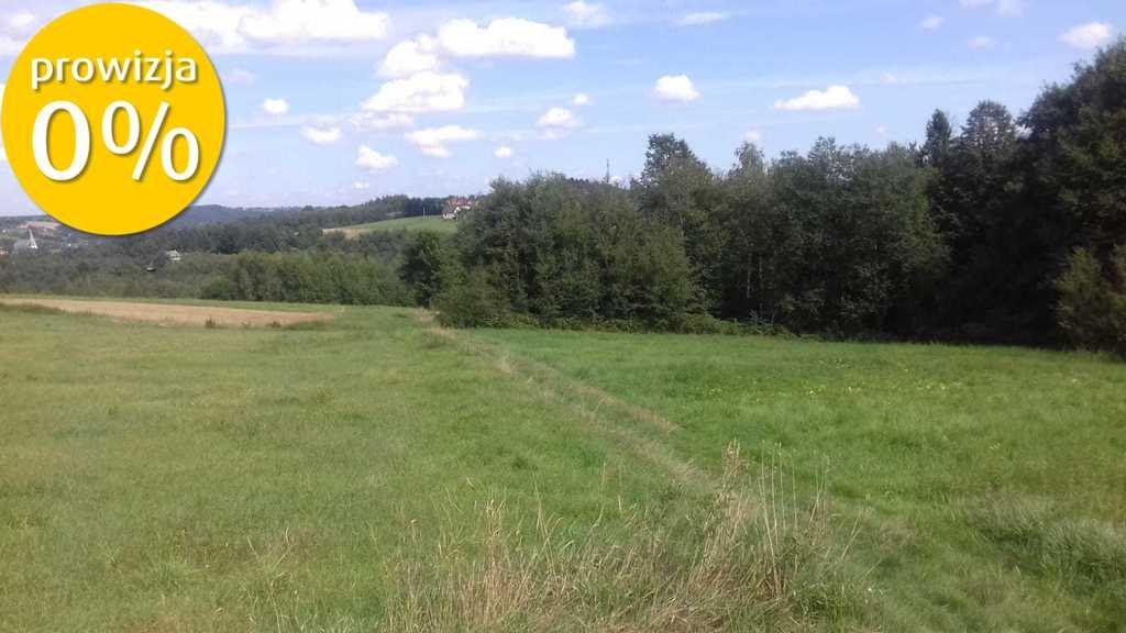 Działka budowlana na sprzedaż Krzyszkowice  6400m2 Foto 6