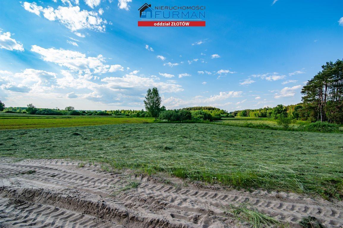 Działka rolna na sprzedaż Witrogoszcz-Kolonia  183634m2 Foto 6