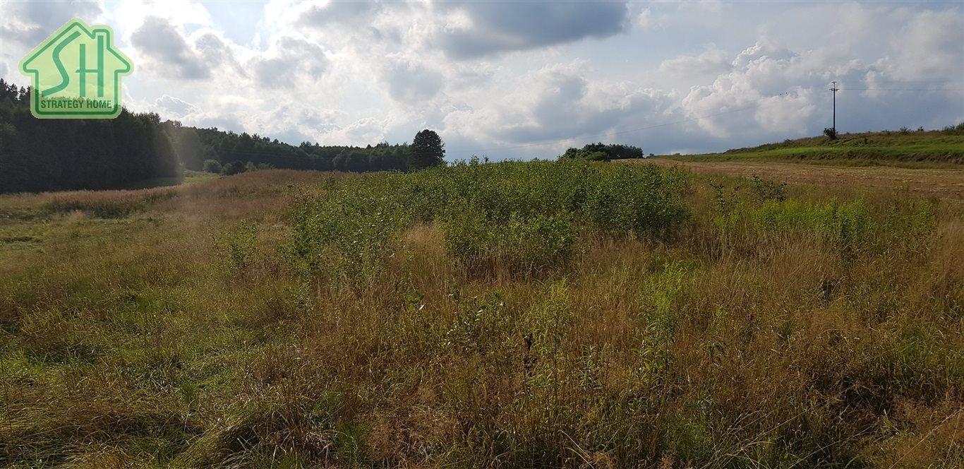 Działka rolna na sprzedaż Nienadowa  10334m2 Foto 2