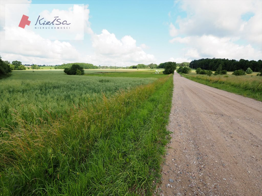 Działka rolna na sprzedaż Dobrzyniewo Kościelne  10378m2 Foto 4