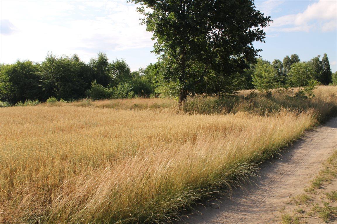 Działka rolna na sprzedaż Łagiewniki Nowe  9500m2 Foto 9