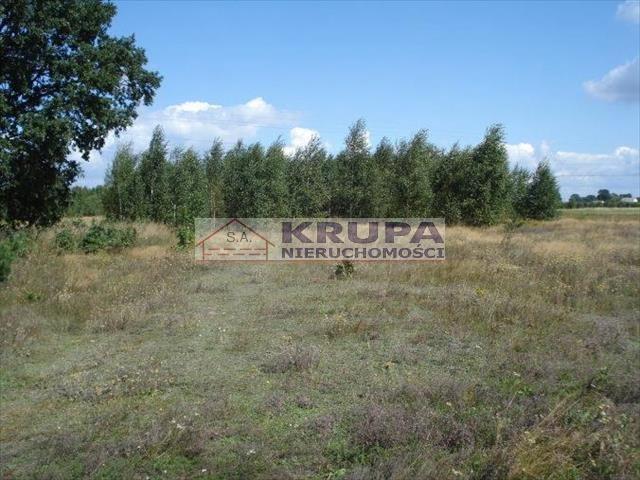 Działka rolna na sprzedaż Jachranka, Letnia (1)  970m2 Foto 1
