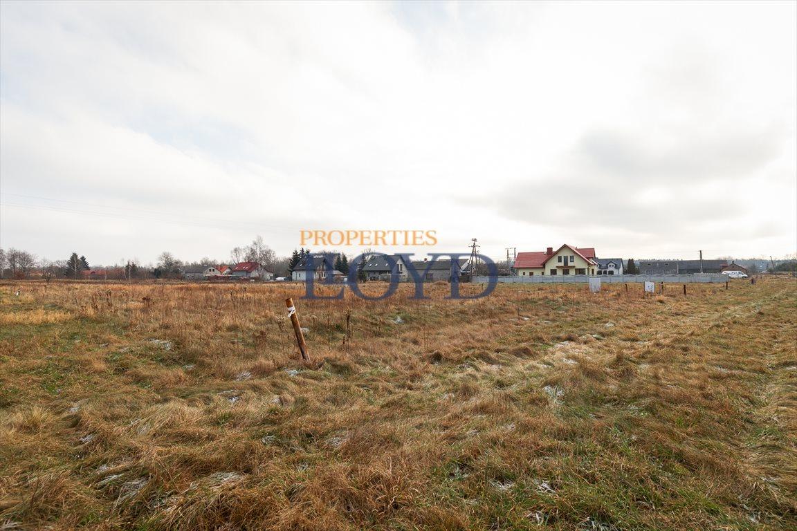 Działka budowlana na sprzedaż Ławki, Dziki Zakątek  1304m2 Foto 6