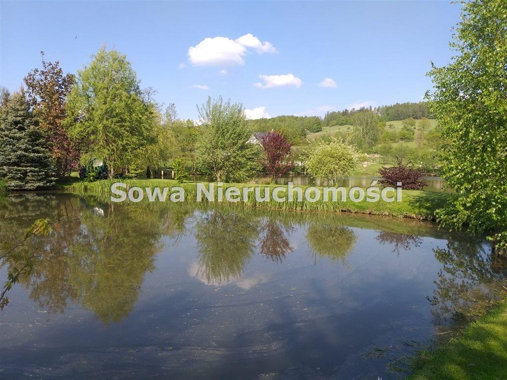 Działka inna na sprzedaż Sosnówka  6000m2 Foto 7