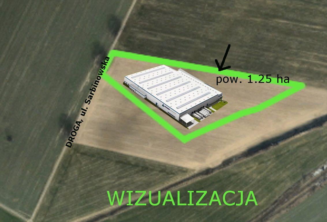 Działka inwestycyjna na sprzedaż Poznań, Nowe Miasto, Żegrze, Sarbinowska  12562m2 Foto 12