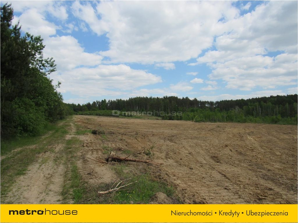 Działka budowlana na sprzedaż Zakrzewo, Linia  55003m2 Foto 7