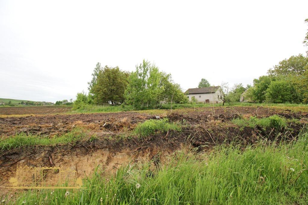 Działka rolna na sprzedaż Tempoczów-Kolonia  23000m2 Foto 7