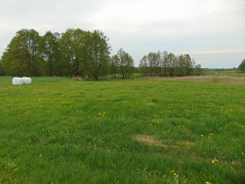 Działka rolna na sprzedaż Kępa Mała  15000m2 Foto 3