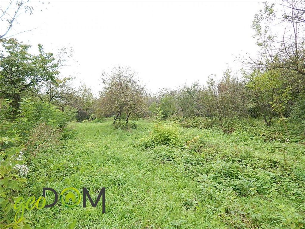 Działka rolna na sprzedaż Horodyszcze-Kolonia  11293m2 Foto 7