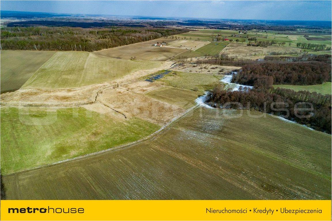 Działka rolna na sprzedaż Piskajny, Godkowo  11900m2 Foto 3