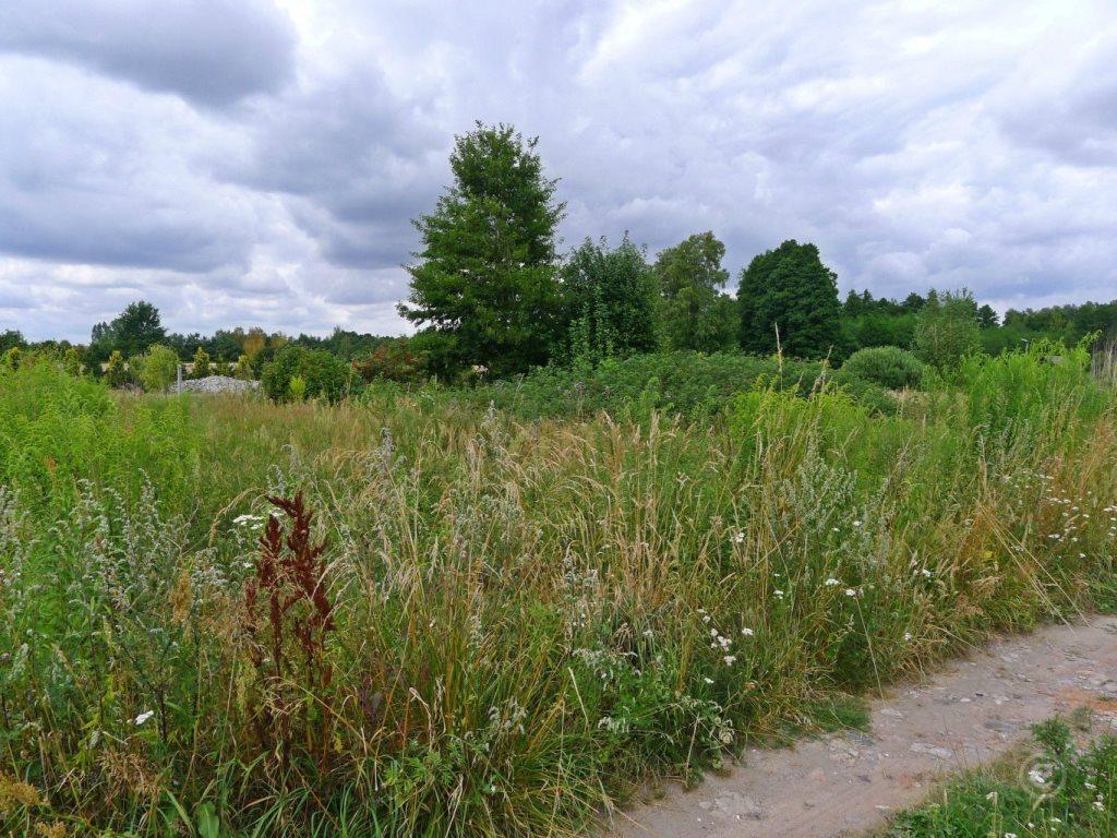 Działka rolna na sprzedaż Biała  1001m2 Foto 2