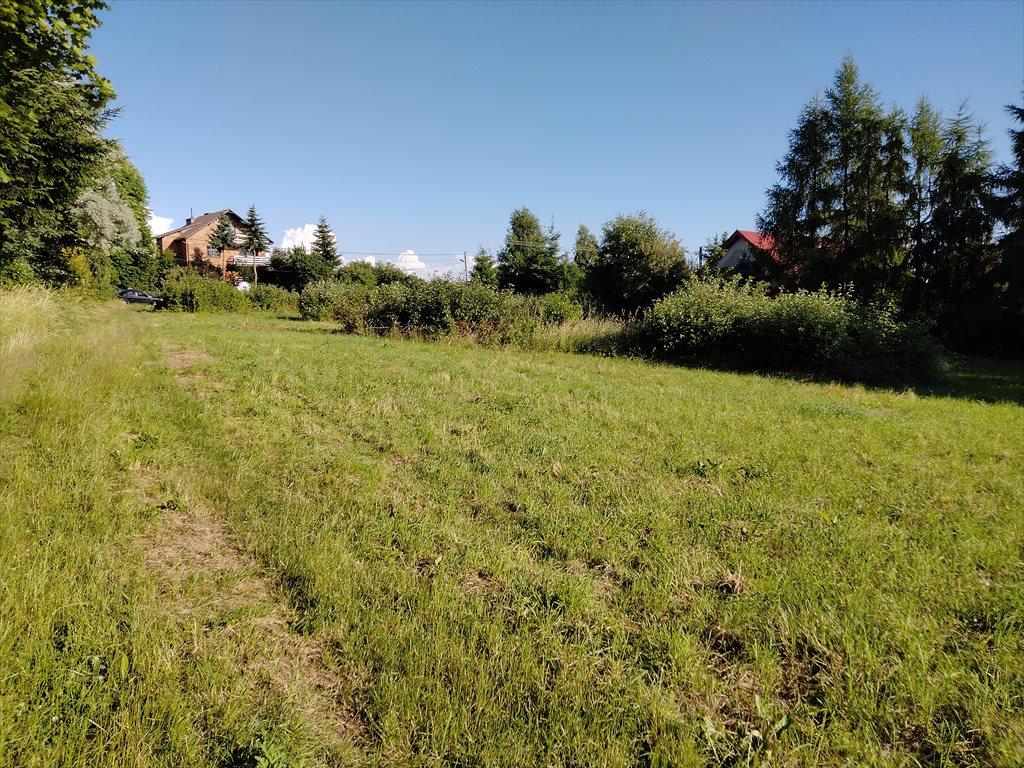 Działka budowlana na sprzedaż Jerzmanowice, Jana Pawła II  2800m2 Foto 5