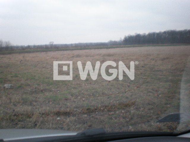 Działka rolna na sprzedaż Wrocław, Świniary  13004m2 Foto 3