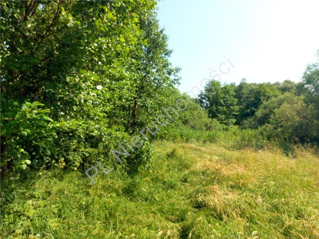 Działka rolna na sprzedaż Ruda  4516m2 Foto 9