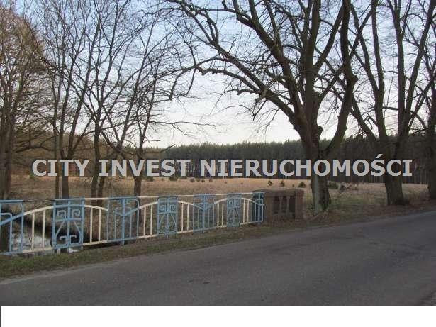 Działka siedliskowa na sprzedaż Zielona Góra, Kiełpin  16700m2 Foto 6