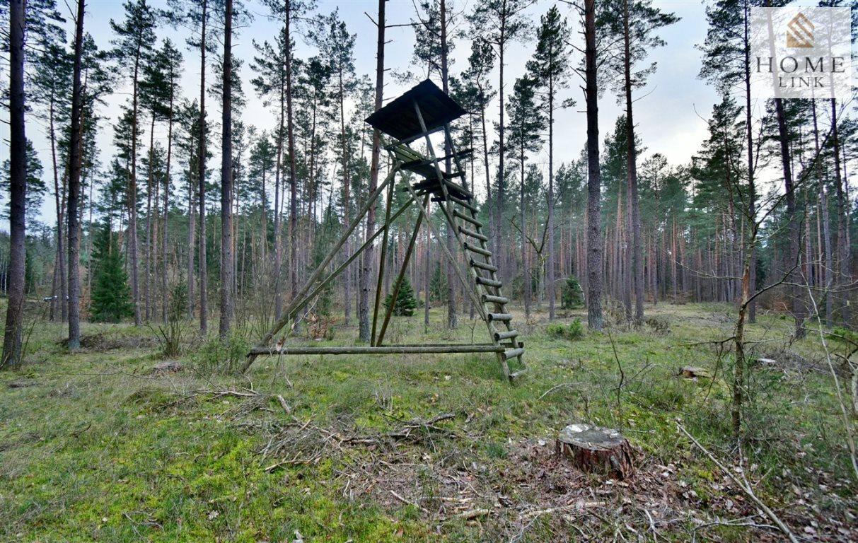 Działka leśna na sprzedaż Warkały  47800m2 Foto 3