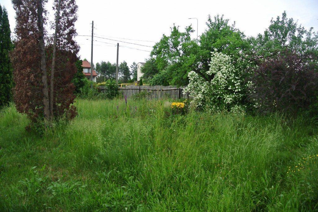 Działka budowlana na sprzedaż Kielce, Zalesie  3290m2 Foto 4
