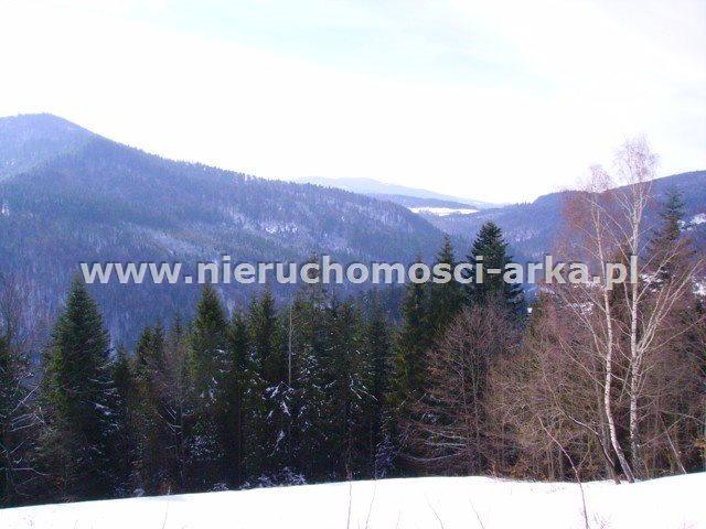 Działka rolna na sprzedaż Szczawa  1300m2 Foto 1