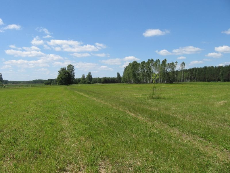 Działka rolna na sprzedaż Warkały  16606m2 Foto 3