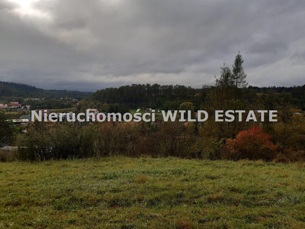 Działka rolna na sprzedaż Olszanica, Olszanica  4017m2 Foto 1