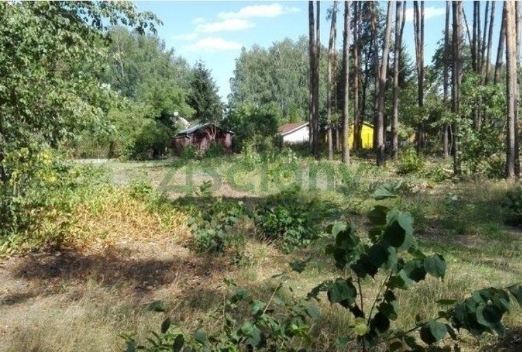 Działka leśna z prawem budowy na sprzedaż Nadarzyn  1500m2 Foto 2