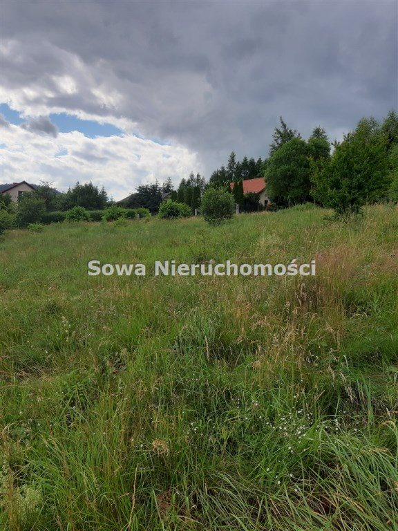 Działka inna na sprzedaż Ludwikowice Kłodzkie  1000m2 Foto 3
