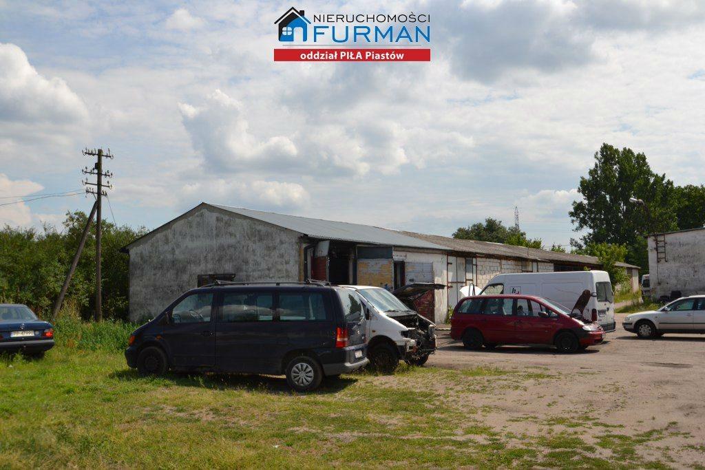 Lokal użytkowy na sprzedaż Piła, Staszyce  3210m2 Foto 11
