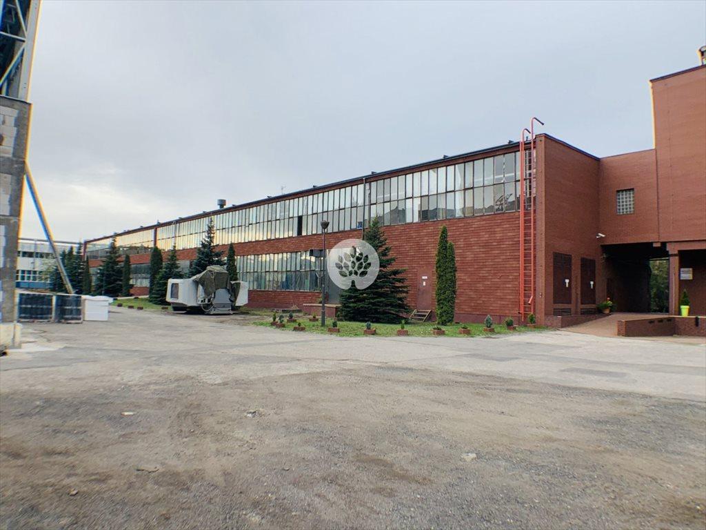 Lokal użytkowy na sprzedaż Bydgoszcz, Glinki  2549m2 Foto 4