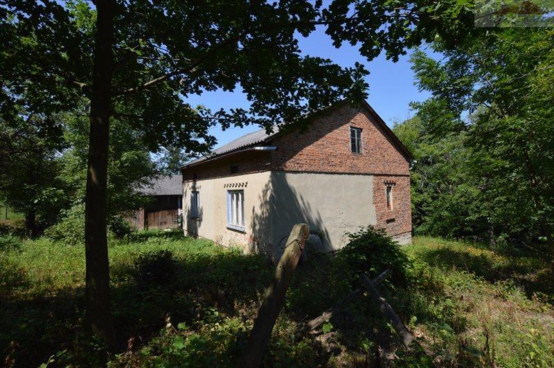 Dom na sprzedaż Świebodna  120m2 Foto 1