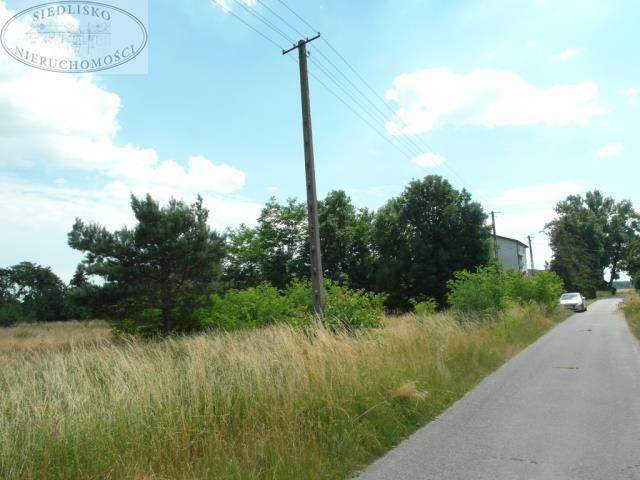 Działka budowlana na sprzedaż Podbolesławiec  3660m2 Foto 2