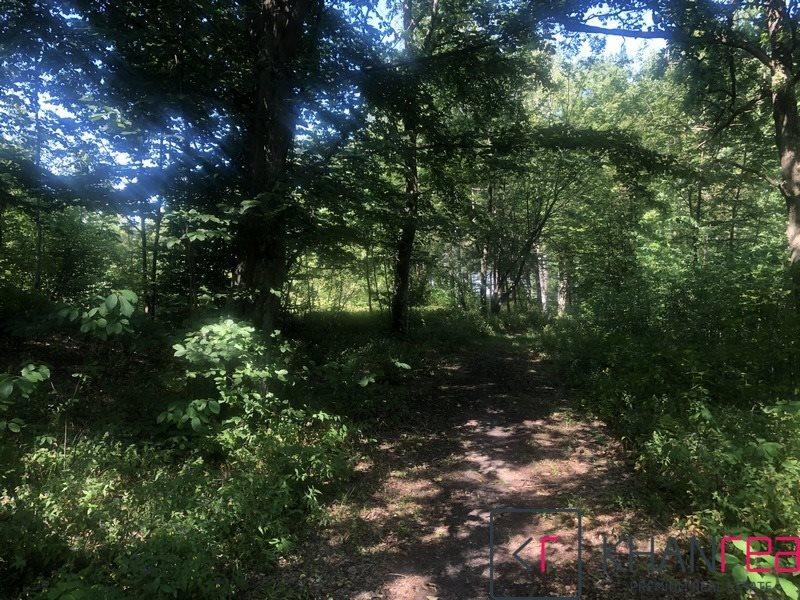 Działka leśna na sprzedaż Sobików  15000m2 Foto 2