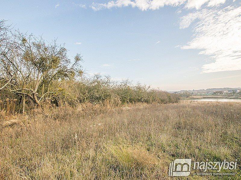 Działka rolna na sprzedaż Chojna, Lotnisko  7032m2 Foto 9