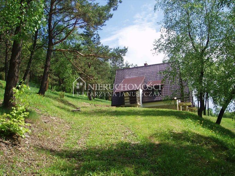 Lokal użytkowy na sprzedaż Dukla, Olchowiec  41600m2 Foto 3