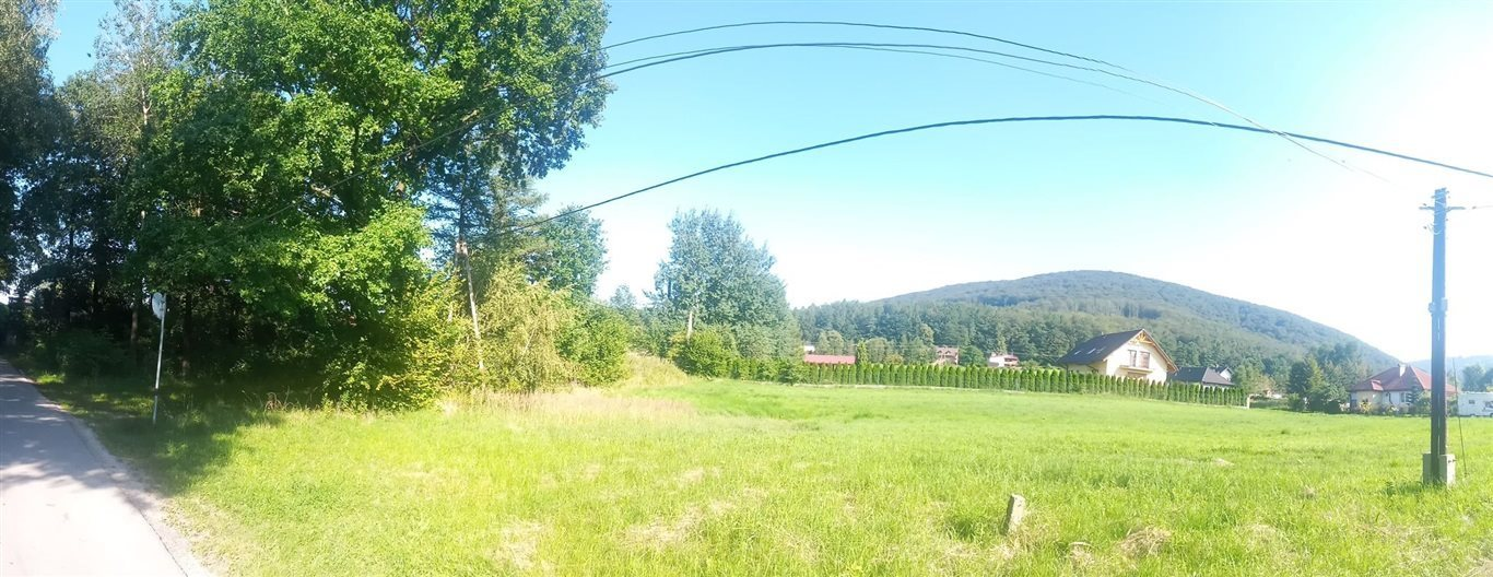 Działka rolna na sprzedaż Jaworze  4962m2 Foto 1