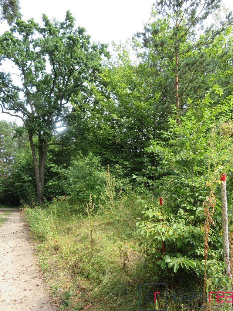 Działka leśna na sprzedaż Sobików  1200m2 Foto 4