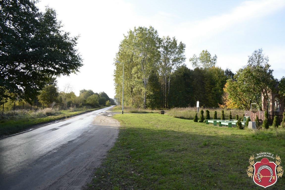 Działka rolna na sprzedaż Dębogórze  2860m2 Foto 2