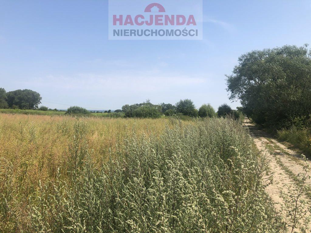 Działka rolna na sprzedaż Szczecin, Skolwin  7218m2 Foto 3