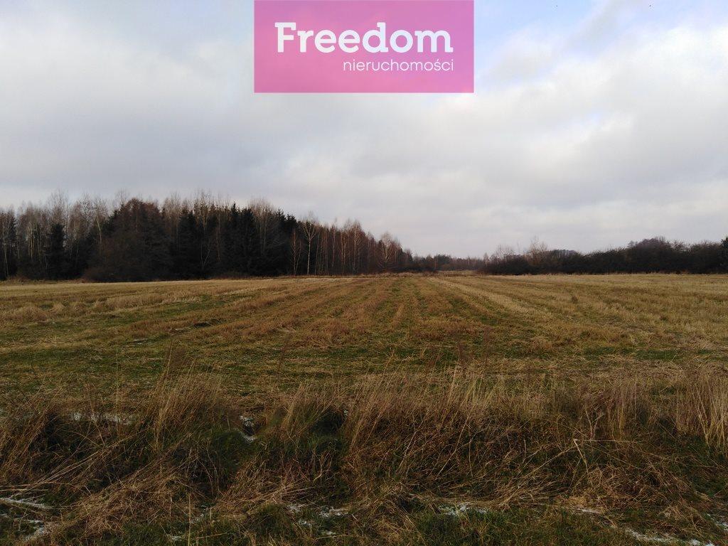 Działka rolna na sprzedaż Zaręby, Gajówki  14000m2 Foto 7