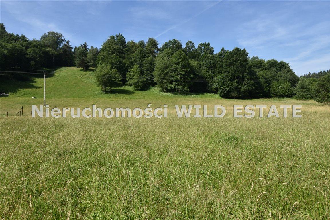 Działka rolna na sprzedaż Lesko, Łączki  4297m2 Foto 5