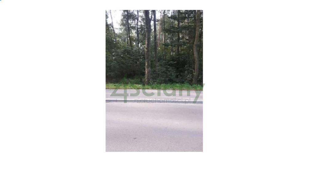 Działka leśna z prawem budowy na sprzedaż Książenice  4000m2 Foto 3