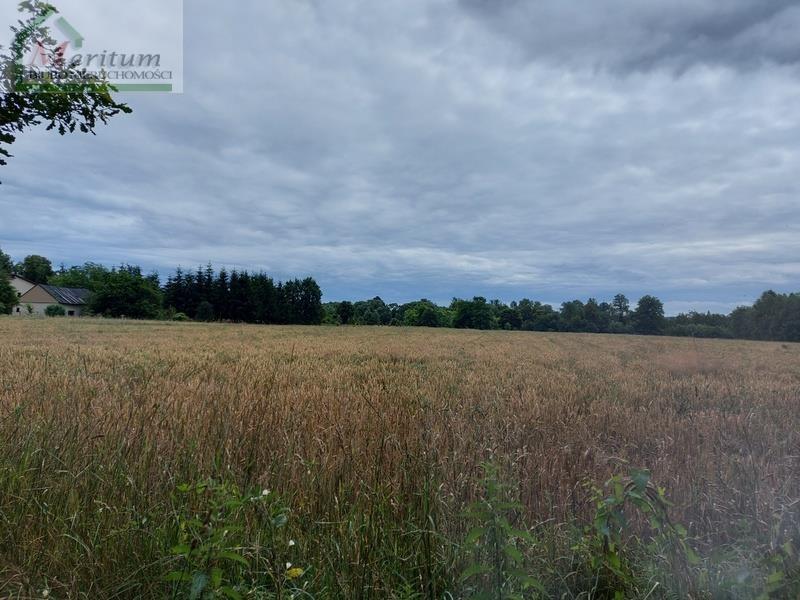 Działka rolna na sprzedaż Świerzowa Polska  4996m2 Foto 1